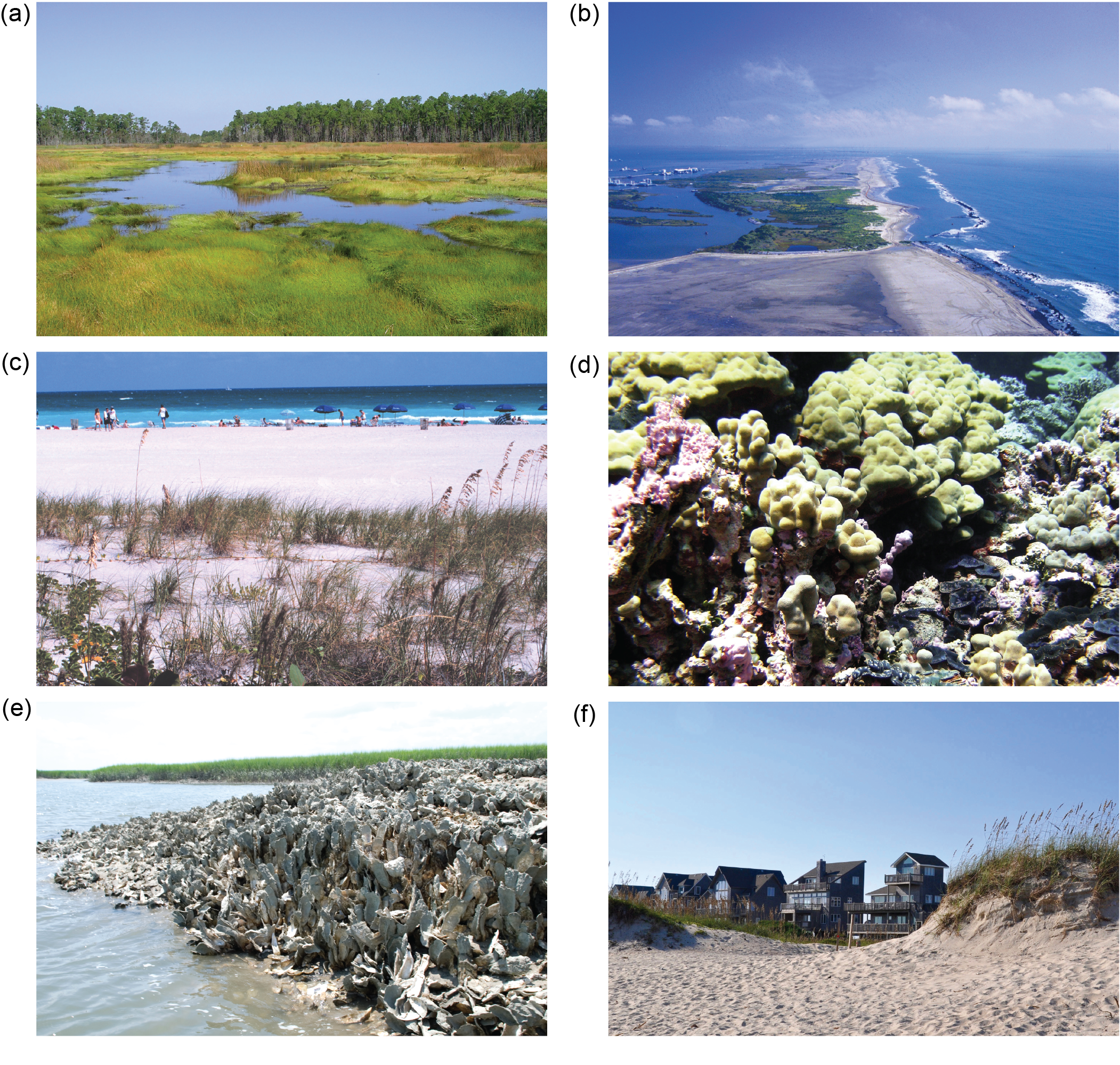Coastal Effects - Fourth National Climate Assessment